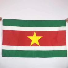 Druck Nationalland Suriname Flagge