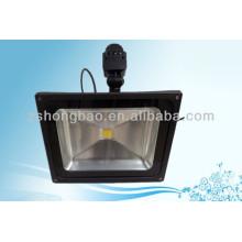 Park 50W IP65 BridgeLux LED flood lighting with motion