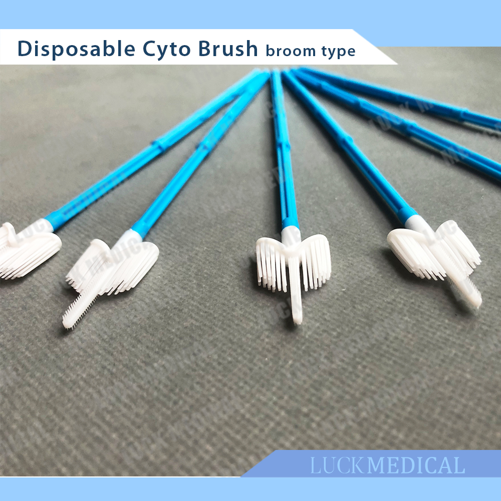 Main Picture Cyto Brush Broom03