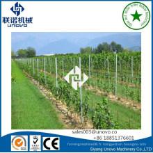 Poste de raisin unovo pour vignoble