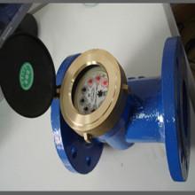 Horizontale Woltmann / Industrieflansch Abnehmbares Element Wasserzähler für Kalt- / Warmwasser