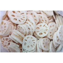 Cultivation IQF frozen lotus root vegetable slices