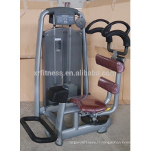XR8808 Machines rotatoires de gymnase de torse