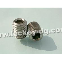 Stainless Steel Grub Screw DIN914