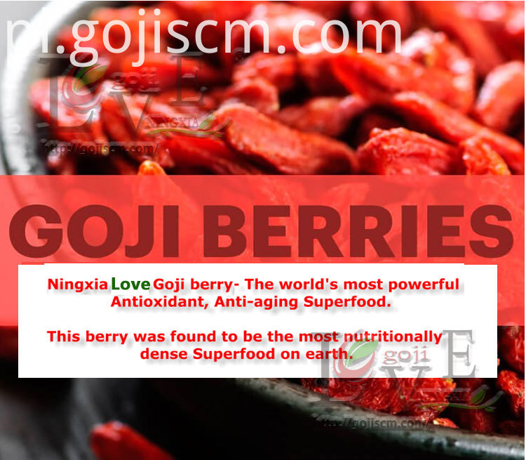 Dried Red Goji Berries introduction