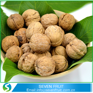 chinese Highest Selling Agricultural Product walnuts In Shell