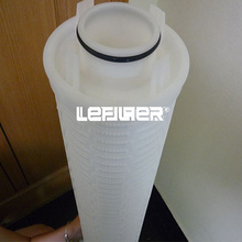 Water filter for power plant