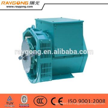 Single Phase Self-Excitation System Brushless Generator