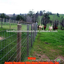 Stainless steel weave wire Ranch Fence for raising animals