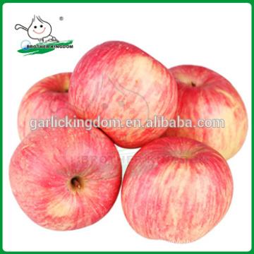 Frischer Apfel / Frischer roter Fuji Apfel / Frischer Apfel aus China