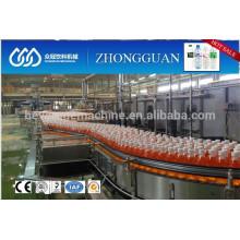 Beverage Bottle Conveyor System
