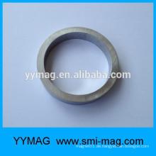 China Hersteller starker FeCrCo Magnet