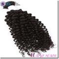 Trama malaya de la máquina del pelo de la Virgen del visión del pelo ningún rizado rizado químico del color natural