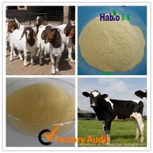 Suplementos de alimentación de suplemento de Habio Factory Enzima múltiple especializada de rumiante