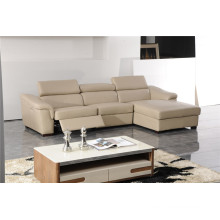Living Room Sofa with Modern Genuine Leather Sofa Set (419)