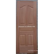 La fábrica de material de puerta de especialidad para producir la piel de puerta de poliéster de alta calidad