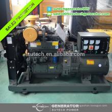 Générateur diesel du weedang 50KW de la marque 50 / 60hz de la Chine 50phasé avec le moteur de ZH4105ZD