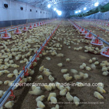 Poultry Farm Machinery &Equipment for Broiler Production