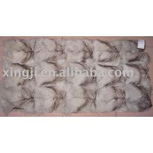 Gros renard bleu plaque de patte arrière plaque de ferraille renard bleu