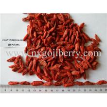 Fornecedor de Frutos Secos de Goji