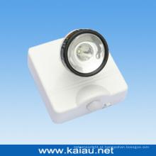 PIR Sensor LED Light