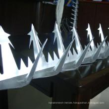 Hot-Dipped Galvanized Wall Spike / Razor Spike / Razor Wire