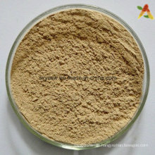 Devil′s Claw Extract 3% 5% Harpagoside