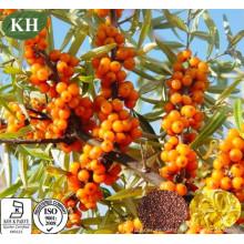 Aceite de semillas de espino cerval de mar 100% puro anti-envejecimiento Omega-6, Omega-3, Omega-9 en cápsula para suplemento nutricional