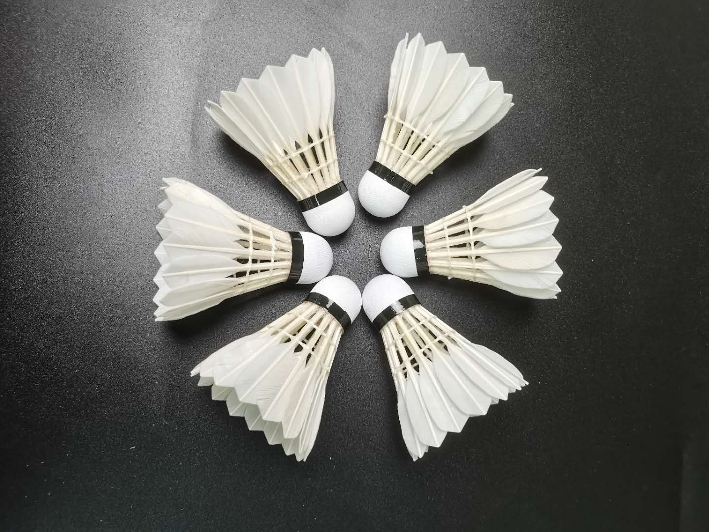 Cheap Price Badminton