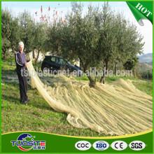 сельское хозяйство маслин сетки для сбора фруктов