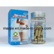 Gélule minceur Max naturel à base de plantes chinoises