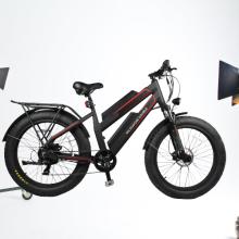 dynavolt double battery 48V 11.6Ah electric mountain bike