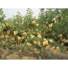 Respirabilité Résistant aux intempéries 150X198mm Peach Protection Papier Sac avec Différents Taille Pas Cher Prix