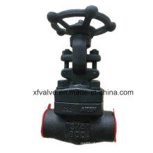 ANSI Forged Carbon Steel A105 Thread End NPT Gate Valve