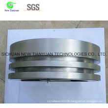 Stainless Steel Piston Body with Different Stages