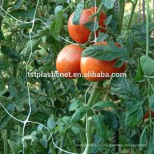 Tomate Trellis Netting (estabilizado a UV)