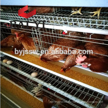 Best Selling Battery Cages for Layers Birds