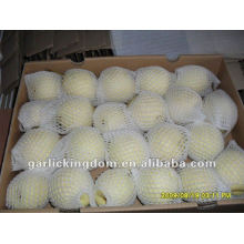 Chinês Ya Pear (36-40-44 em 9kg ctn)