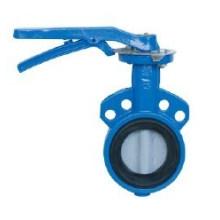 Válvula Borboleta com Revestimento Epóxi (D71X)