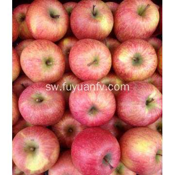 App Quality Mpya Fresh Qingan apple