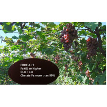 EDDHA-Fe6% Hierro orgánico quelado