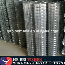 Hot sales black iron welded wire mesh factory