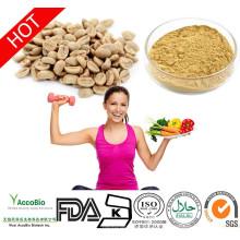 Extrait de grain de café vert pur avec GCA, 800 mg, capsules végétales, 60 unités. Contient 50% d'acide chlorogénique ARABICA