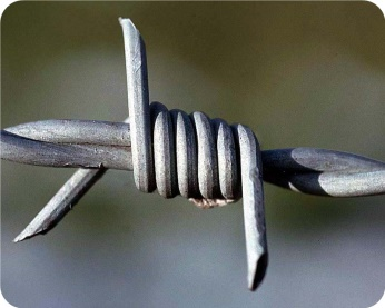 Reverse twist barbed wire