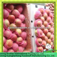 China manzana roja estrella 20kg cartón
