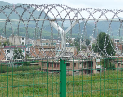 concertina-wire-fence