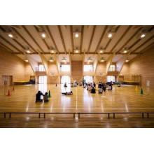 High Performanc Maple Sports Wooden Floor