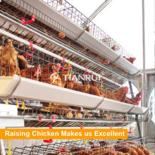 Tianrui A Type Automatic Poultry Farm Layer Cages