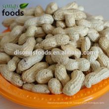 Westafrikanische Nahrungsmittel der Erdnuss inshell