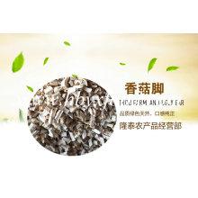 Jambe de champignons Shiitake séché dans l'emballage sous vide